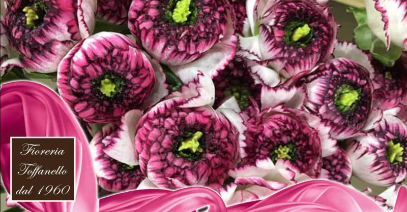 Offerta fioreria aperta di lunedì - Occasione negozio di fiori aperto lunedì
