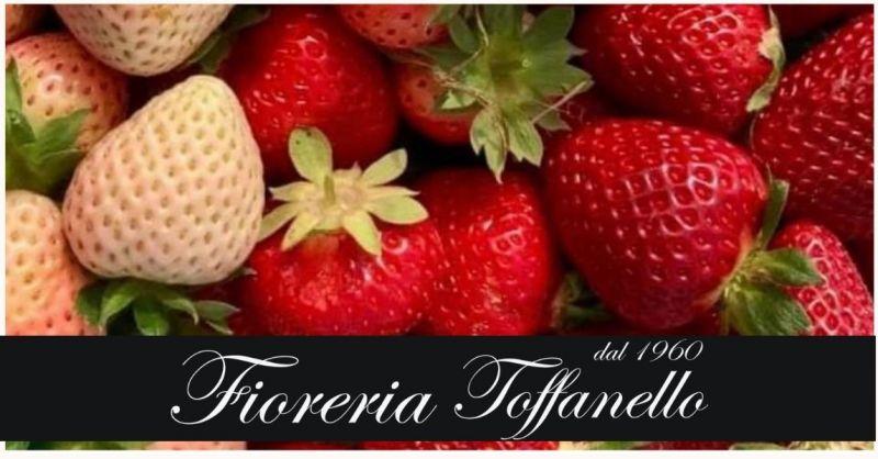 FIORERIA TOFFANELLO - Offerta vendita fragole biologiche bianche e rosse dolcissime