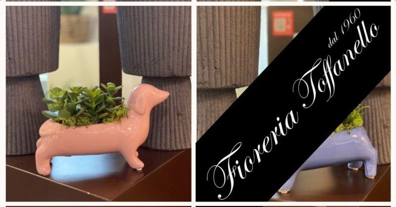 FIORERIA TOFFANELLO - Promozione articoli idea regalo piante grasse statuina forma di bassotto
