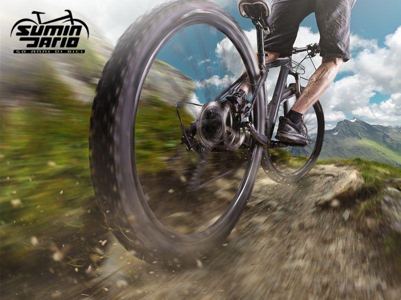 Promozione - Offerta - Occasione - Vendita mountain Bike - Sant'Ambrogio di Torino