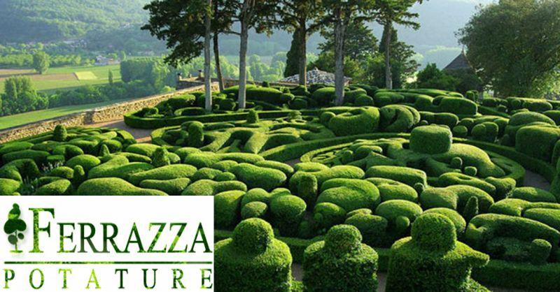 offerta servizio potatura siepi e arbusti Roma - occasione manutenzione piante potatura alberi