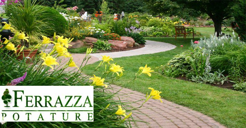 offerta aree verdi manutenzione prato Roma - occasione creazione giardini Roma