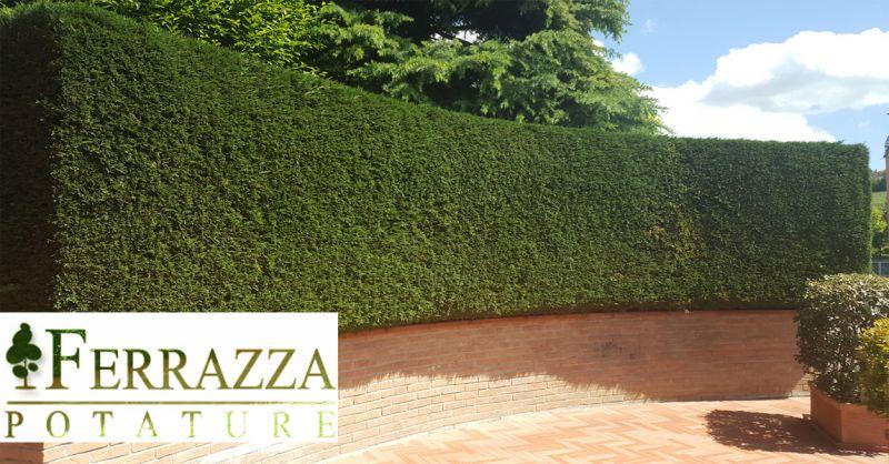 Ferrazza Potature offerta giardiniere Roma tiburtina - occasione manutenzione giardini Roma