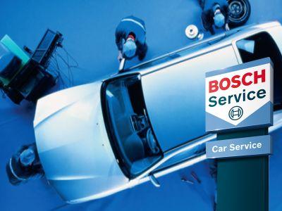 elettrodiesel fiorenzuola darda bosch car service