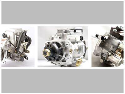 elettrodiesel fiorenzuola darda officina specializzata diesel
