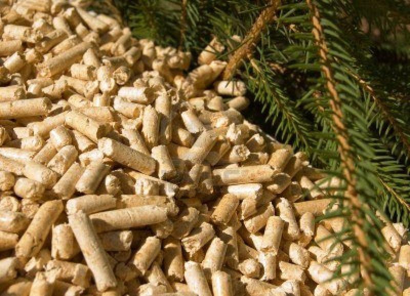 offerta vendita pellettatrice elettrica 380v  da legno - promozione produzione pellet