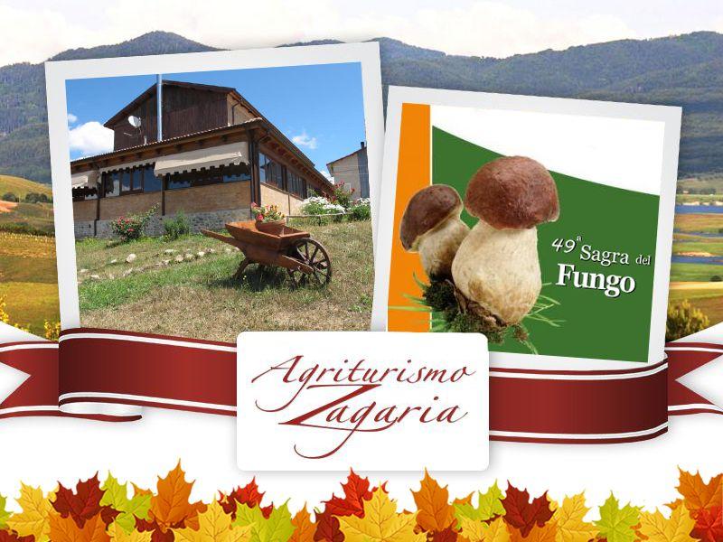 offerta soggiornare a spezzano della sila - promozione agriturismo nella sila sagra del fungo