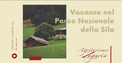 agriturismo zagaria offerta vacanza in agriturismo in sila promozione fattorie aperte in sila
