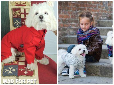 promozione offerta occasione abbigliamento cani made for pet cosenza