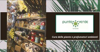 offerta prodotti cura per piante roma candele e profumatori ambiente grottaferrata