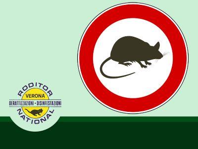 offerta disinfezione contro roditori bonifica contro roditori verona roditor national