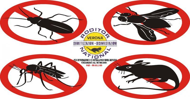 offerta servizio disinfestazioni Verona - occasione sanificazione ambienti infestati Verona