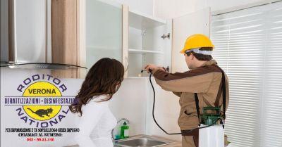 offerta deblattizzazione scarafaggi in casa verona occasione servizio di eliminazione blatte