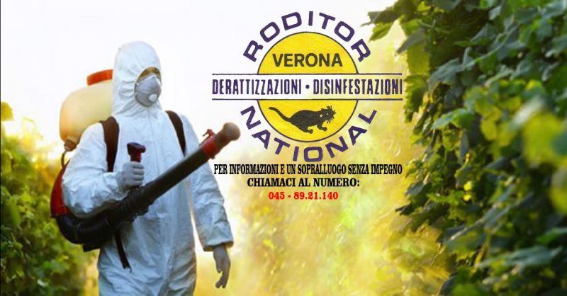 offerta bonificazione dalle zanzare Verona - occasione azienda di disinfestazioni a Verona
