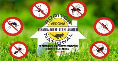 offerta rimozione vespe da case e imprese verona occasione disinfestazione da formiche verona