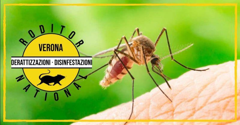 Promozione specialisti disinfestazione zanzare - offerta servizio di bonifica zanzare Mantova