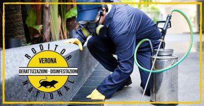 promozione specialisti nella disinfezione di ambienti civili e industriali mantova