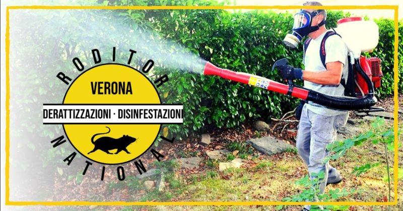Offerta professionista in disinfestazione insetti - occasione servizio sanificazione ambientale