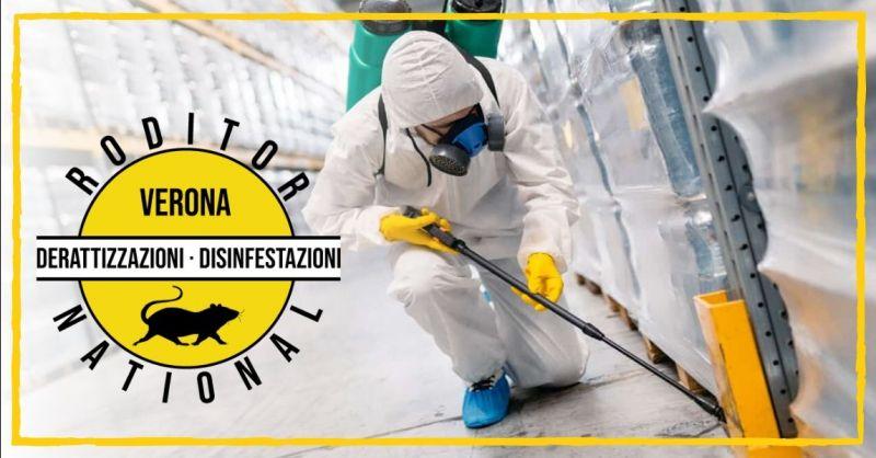 RODITOR NATIONAL - Offerta azienda specializzata nella disinfestazione animali infestanti Verona