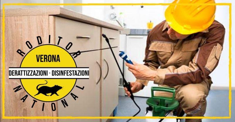 Offerta eliminazione tarme dai tessuti - occasione disinfestazione tarli del legno Verona