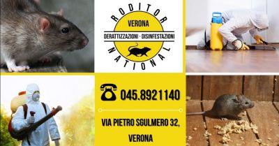 offerta disinfestazione topi in giardino occasione servizio professionale derattizzazione casa provincia verona