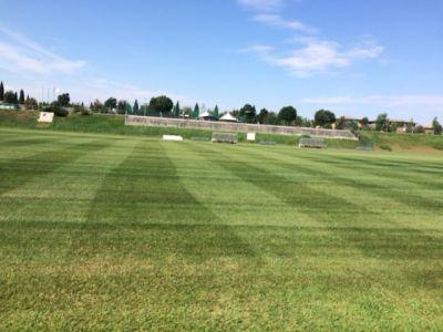 offerta servizio giardinaggio promozione manutenzione campi da calcio giardini parchi verona