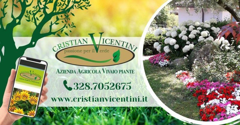 Offerta progettazione realizzazione giardini provincia Verona - Occasione trova il miglior giardiniere provincia di Verona