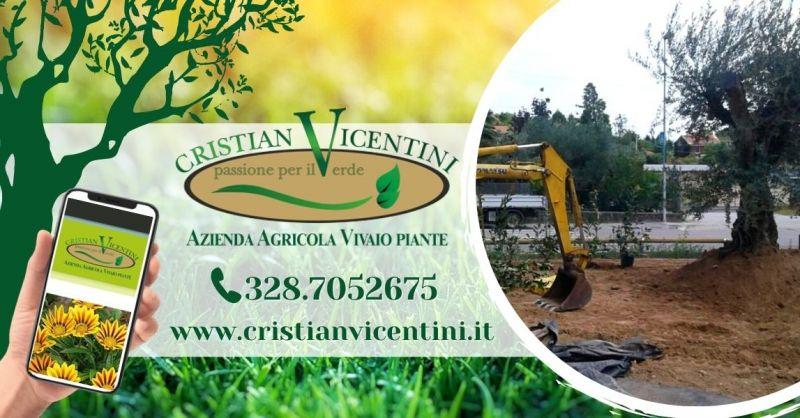 Offerta professionista manutenzione giardini aree verdi - Occasione progettazione di giardini pubblici privati Verona