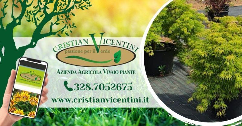 Offerta servizio realizzazione spazi verdi - Occasione preventivo lavori di giardinaggio provincia Verona