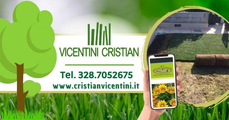 Offerta Servizio realizzazione nuovo giardino - Occasione Vendita piante da giardino Verona e provincia