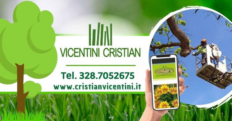 Offerta servizio professionale taglio siepe - Occasione Potatura alberi alto fusto Verona e limitrofi