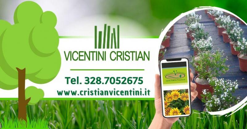 Offerta Manutenzione professionale di aree verdi - Offerta Vendita piante da siepe provincia Verona