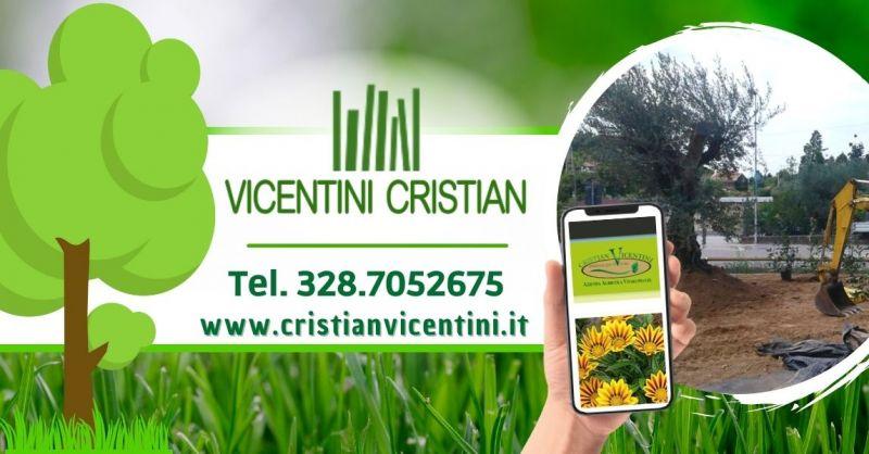 Offerta Professionista nella realizzazione di giardini privati aree verdi in provincia di Verona