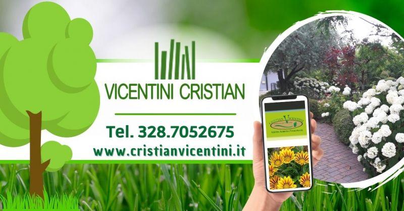 Offerta vendita piante da esterno produzione propria - Occasione acquisto piante da cespuglio Verona