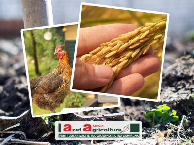 offerta giardinaggio orto occasione sementi animali promozione diserbanti fungicidi imperia