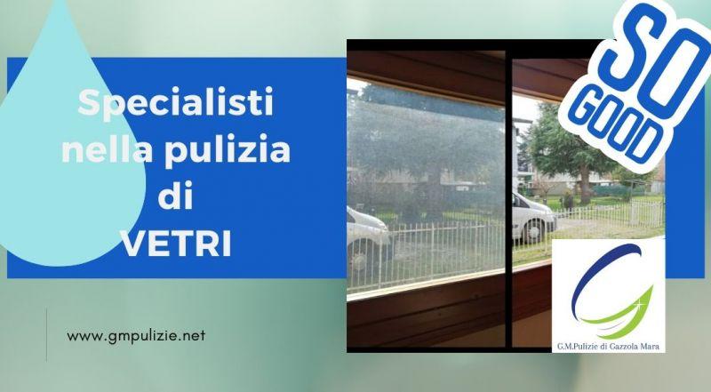 Occasione impresa di pulizia per la pulizia di vetrate a Treviso - Offerta pulizia vetri a Treviso