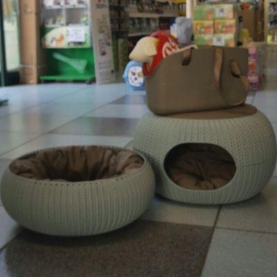 offerta cuccia gatti como promozione animali domestici tira graffi como arca di noe falloppi