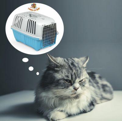 offerta trasportino cani gatti promozione pratiko pet carrier arca di noe