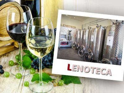 offerta vino sfuso viareggio promozione vendita vino sfuso camaiore vino sfuso pietrasanta