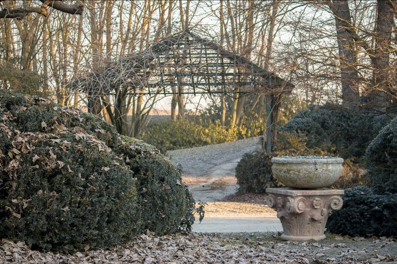 offerta progettazione strutture giardino occasione pergole e gazebi giardino bearesi giardini
