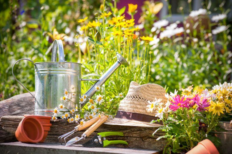 offerta articoli giardinaggio occasione articoli giardino promozione attrezzi da giardino