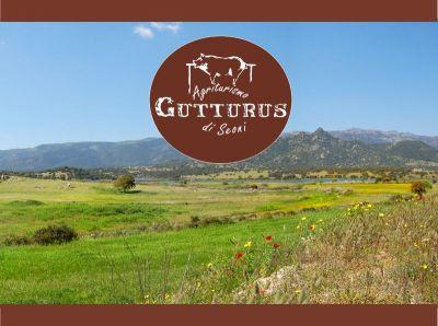 promozione cucina tipica sarda offerta escursione sarrabus agriturismo gutturus muravera