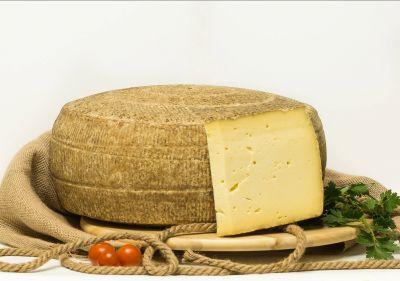 formaggio musone la livrea