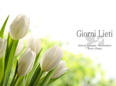 offerta fiori freschi recisi occasione pianta da regalare giorni lieti