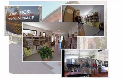 offerta distilleria artigianale vicino al lago di garda produzione grappe in valpolicella