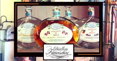 offerta vendita distillati di frutta occasione distillati di frutta produzione propria