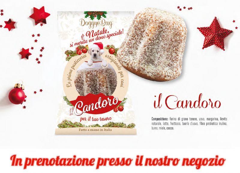 Promozione vendita Candoro per animali Terni - offerta panettone per cani gatti Terni