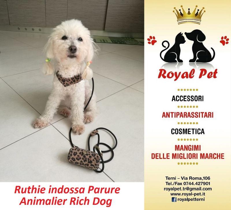 Promozione vendita accessori per cani Rich Dog - Offerta guinzagli chic per cani rich dog Terni