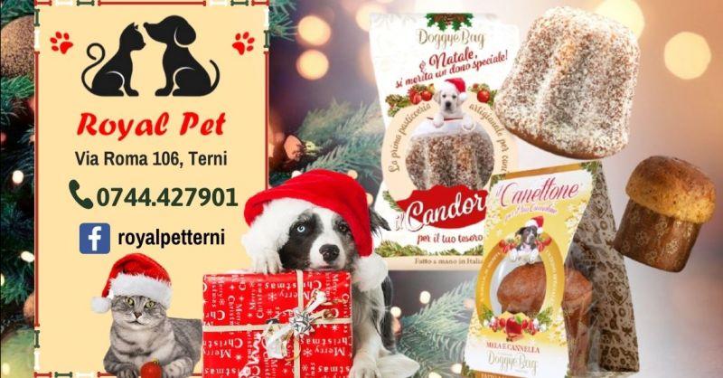 Offerta Pandoro per cani Candoro Terni - Occasione Panettone per cani Canettone DoggyeBag Terni
