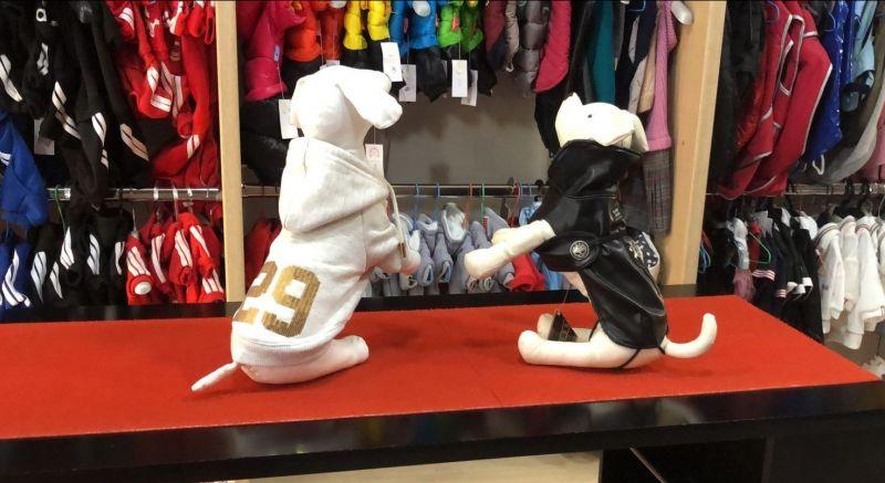 Offerta Abbigliamento Invernale per Cane e Gatto Terni - Occasione abbigliamento fashion per pet Terni